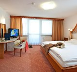 Hotel_Alpina__Juniorsuite_Kat_D_North.Side1.jpg